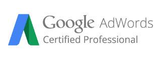 Google AdWords Propessional